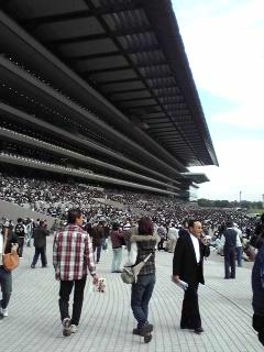 日曜日に東京競馬場に行ってきました(*^_^*)