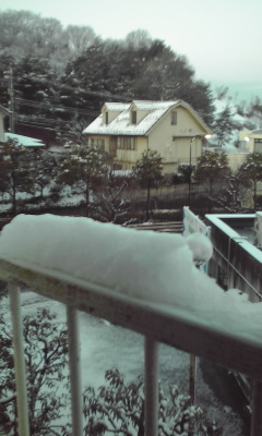 今日は立春ですが寒かったですね。