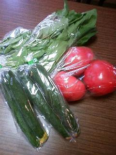 地場野菜!