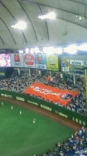 オレンジ魂 2012