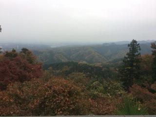 高尾山の紅葉を見に行ってきました!